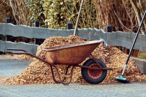 Čišćenje travnjaka