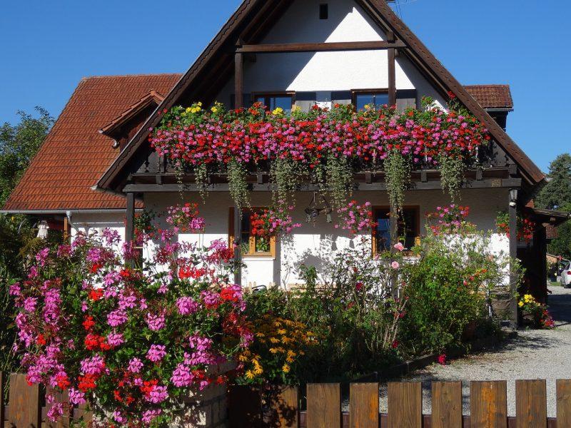 Prolećno uređenje bašte i terase