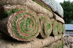 Postavljanje travnog tepiha – busenovanje