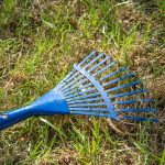 Grabljenje (grabuljanje) travnjaka