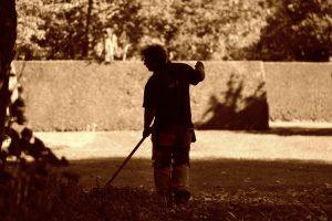 Održavanje i nega travnjaka