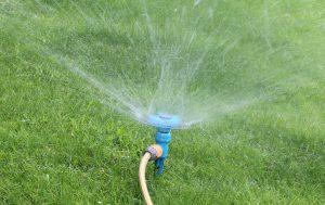 Navodnjavanje (zalivanje) travnjaka
